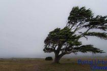 Hasta las 18hs el registro de lluvia fue de 11mm y rige un alerta de viento para este domingo