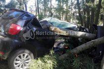 RP 91: Un oficial de policía fallece cerca de Las Flores