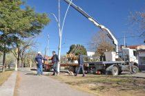 Continúa la obra de iluminación en el Parque Mitre