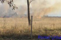 Incendio de pastizales en el predio de la colmena