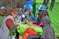 Este domingo está el Mercado en tu barrio en el Parque Helios Eseverri
