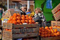 """""""El Mercado en tu Barrio"""" se instala este domingo en Parque Eseverri"""