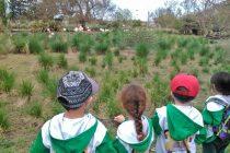 La conservación de la naturaleza desde el jardín