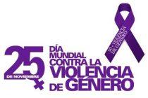 25 de Noviembre : Día Internacional de la No Violencia de Género