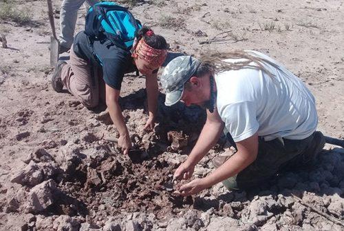 Proyecto de investigación busca comprender cómo era la manufactura cerámica prehispánica