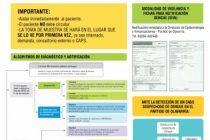 Dengue: medidas de prevención y recomendaciones