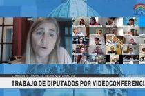 Liliana Schwindt: «se termina la Argentina de las avivadas»