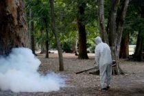 El brote de dengue ya es histórico y suman 2206 los casos en territorio bonaerense