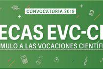 Becas CIN: Siete estudiantes de la FACSO fueron seleccionados en la última convocatoria