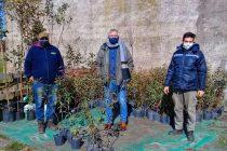 Continúa el Plan Forestal Municipal en el vivero