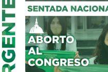 """Convocaron a una """"sentada nacional"""" por la legalización del aborto"""
