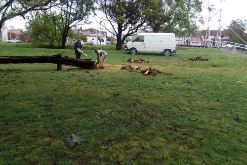Bomberos y Municipio trabajan juntos tras el fuerte temporal