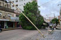 Tras el intenso viento varios destrozos en la ciudad
