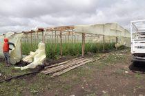Con un verdurazo reclamarán a Galli atienda los daños provocados por la tormenta
