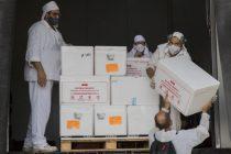 Mañana llegan 450 dosis de la vacuna Sputnik al Hospital de oncología