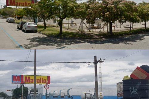 Ante la denuncia vecinal, el Foro Olavarría pedirá informes al Ejecutivo por la tala de arbolado público