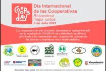 3 de Julio: Día Internacional de las Cooperativas