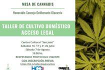 """La Mesa de Cannabis avanza en la formación: """"Talleres de cultivo doméstico. Acceso legal."""""""
